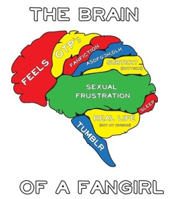 Elu seems to think that this is my brain